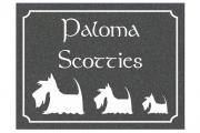 Celtic Scottie Engraved Sign