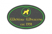 Irish Wheaten Oval House Sign