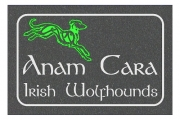 Irish Wolfhound Soul Friend Engraved Sign
