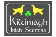 Kiltimagh House Sign