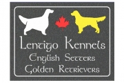Lentigo Kennels Engraved Sign